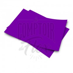 Easyflex PU - Purple 065